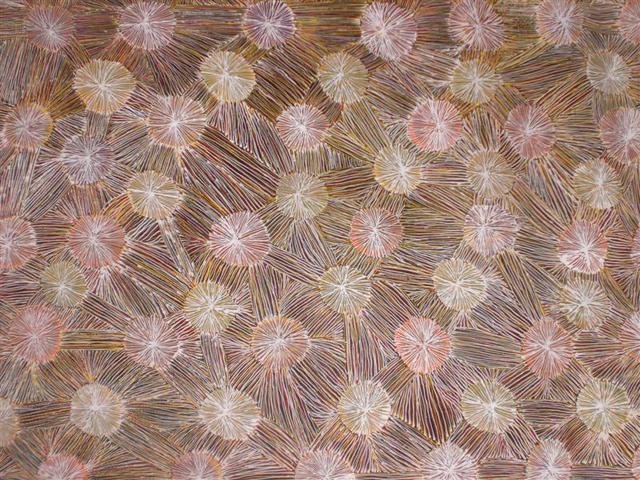 Alpite  FlowersInspired by the artists Dreaming or Tjukurrpa
