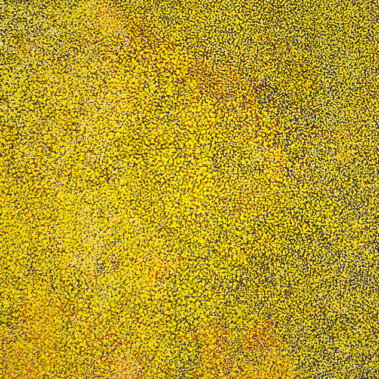 Anwekety (Bush Plum)In her paintings