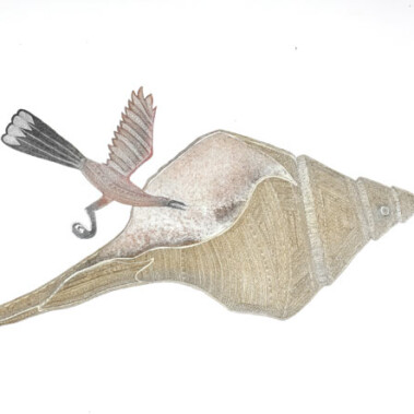 Bu Ka Palgie (Shell and Bird)
