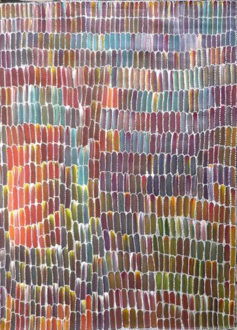 Bush Plum (Anwekety)Polly Ngale was born 1925 and was part of the original group of women who taught batik at Utopia in the 1970s before painting with acrylic paints on canvas. She often worked with the late Emily Kame Kngwarreye