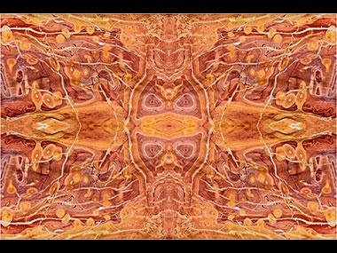 Large Scale Digital Art Exhibition