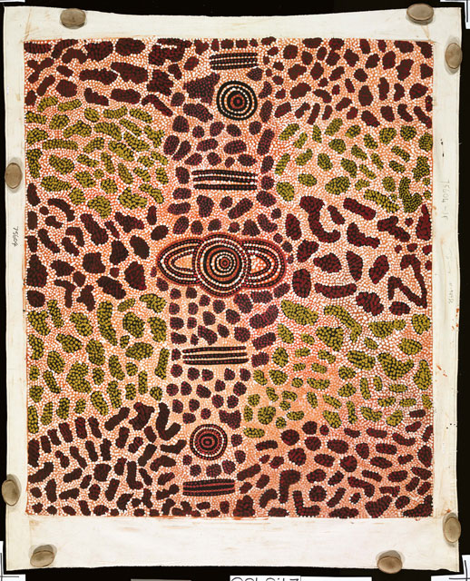 Wilkinkarra Men's CampThis artwork was part of a special slideshow feature for the exhibition Papunya Painting: Out of the Desert at the Australian Museum